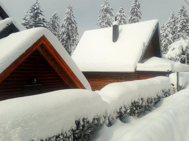 Under thick snow blanket