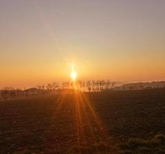 ...ein Frühlingsmorgen erwacht...