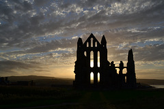 Whitby 16