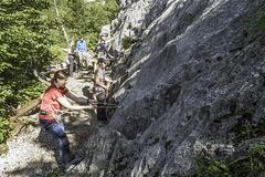 Chamois Rock