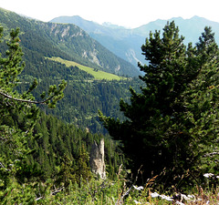 Petit coin de paradis / Small paradise in the Alps