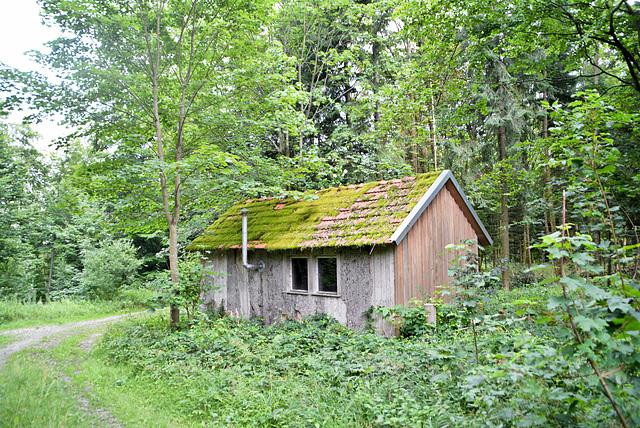 Alte Waldhütte
