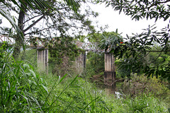 Bridge over Yabba Creek