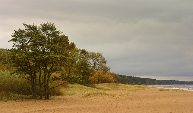 Beach in Saulkrasti.
