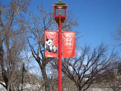 Sien Lok Park in Chinatown Calgary, Canada