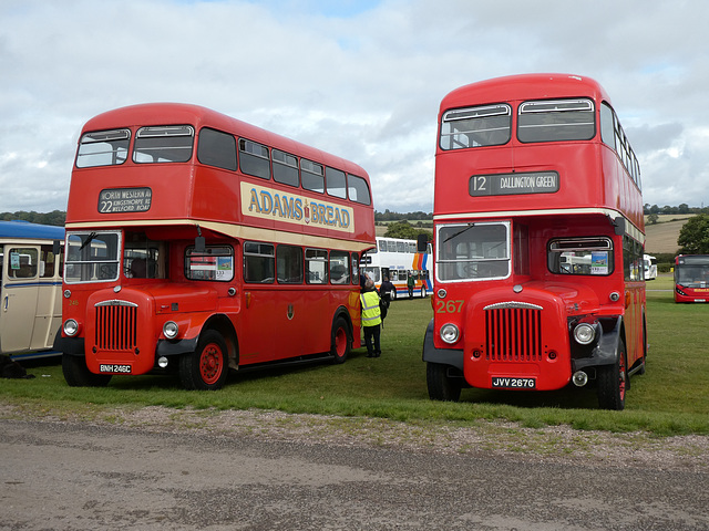 Preserved Northampton Daimlers at Showbus - 29 Sep 2019 (P1040729)