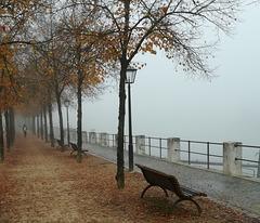 riverside dream