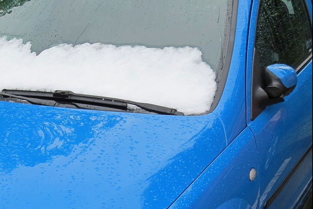 (118/365) Ja! Es ist Schnee!