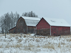 Old barns in winter