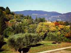 Fiesole landscape