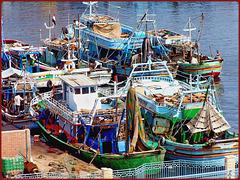 Port Said : le barche dei pescatori nel porto sorvegliato dai militari