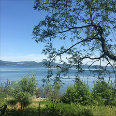 At the lake.