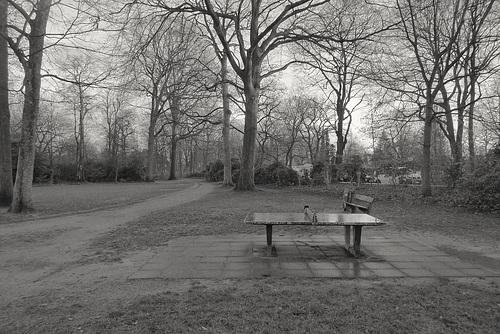 Winterliche Stimmung, Tischtennis Platte -- park-1220522
