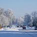 Солнечное зимнее утро/Winter sunny morning
