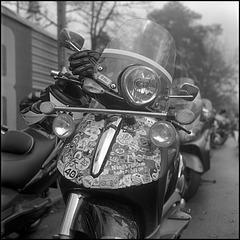 portrait of a bike(r)
