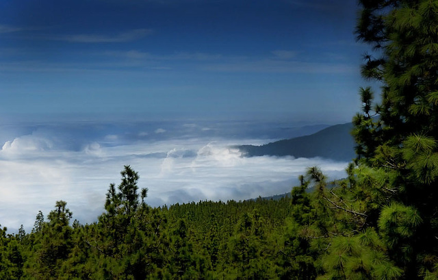 Se trouver au dessus d'une mer de nuages  II