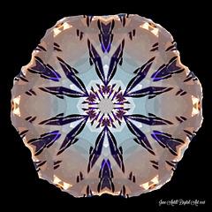 A crystal fractal