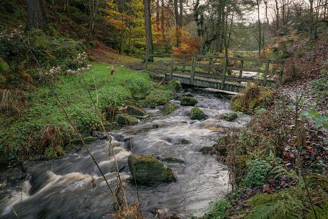 Ye' Olde' Bridge - over 'Wyming brook'.. Sheffield.