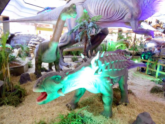 DSCN2798 - Ankylosaurus magnoventris, Ankylosauridae Ornithischia