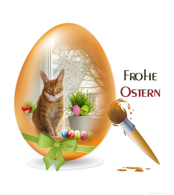 Osterkater :-)
