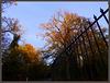 Couleurs d'automne à Verdes...
