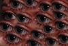 Eye Eye Eye Eye,,,,,, A puzzle!