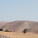 Monterey County / CA-198 (# 0580)