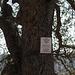 Monterey County / CA-198 Peachtree Ranch Wildlife area (# 0583)