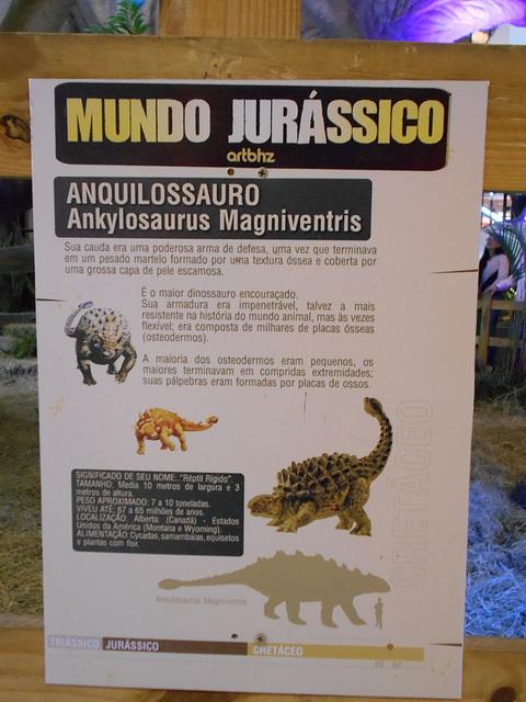 DSCN2800 - Ankylosaurus magnoventris, Ankylosauridae Ornithischia