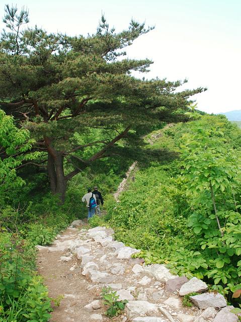 Weg zum Gangcheon-Tal in Südkorea