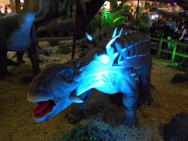 DSCN2803 - Ankylosaurus magnoventris, Ankylosauridae Ornithischia