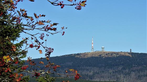 Brocken vom Wurmberg aus gesehen.