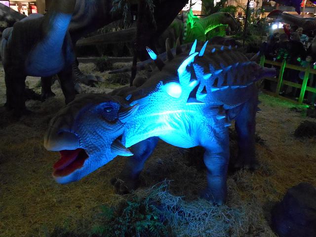 DSCN2804 - Ankylosaurus magnoventris, Ankylosauridae Ornithischia