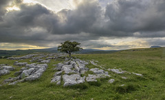 The limestone path