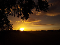 Und immer wieder ... ein Lichtmorgen ;-)