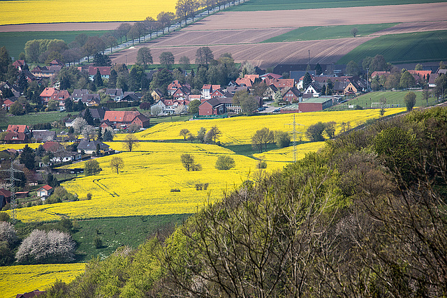20160501 1342RVAw [D~SHG] Weserbergland, Paschenburg, Schaumburg