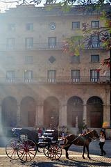 Horse carriage in Habana Vieja