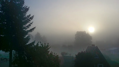 Montag: Nebelmorgen