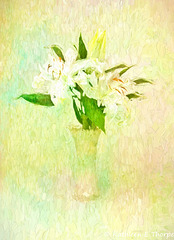 Siberia in Belleek with French Kiss Texture Topaz Impression Impasto II