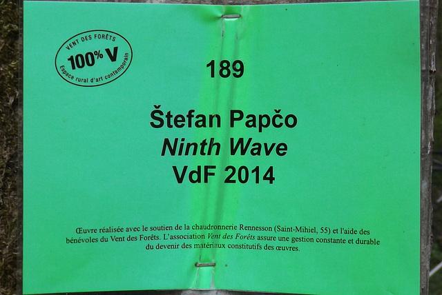 vdf 189 ninth wave (00)