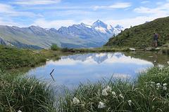 Paysage de montagne avec linaigrettes, vers Chemeuille, Valais (Suisse)