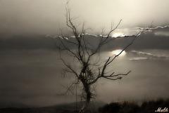 Sous un ciel nébuleux.