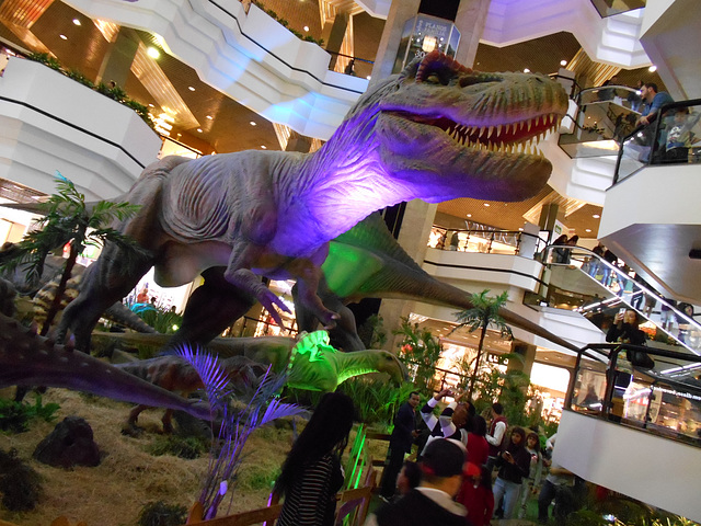 DSCN2812 - Tyrannosaurus rex, Theropoda