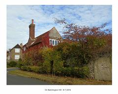 On Blatchington Hill 8 11 2016