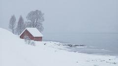 Tromsø area, Snowing