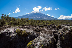 Vulkan Osorno vom Fluß Petrohue aus I