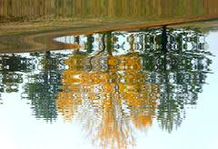 effetto lago