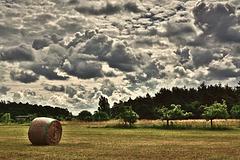 Die Heumahd ist zum Glück beendet - Fortunately haymaking is finished