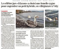 Des nouvelles de Klaxon