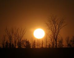 november sun / soleil de novembre